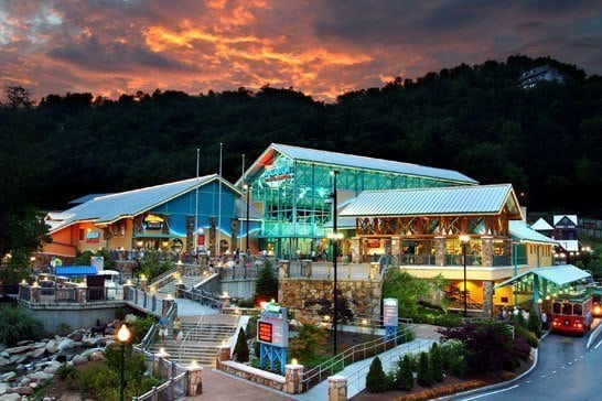 A photo of Ripley's Aquarium of the Smokies.