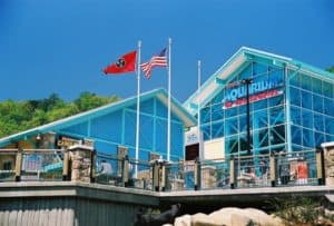 s Aquarium of the Smoky Mountains