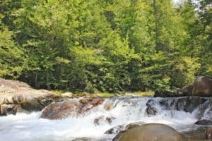 Scenic photo of the Little Pigeon River rushing by.