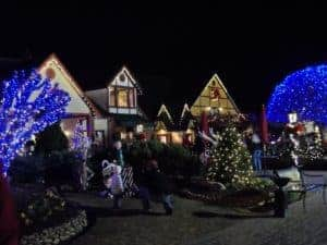 lights at night at the christmas place